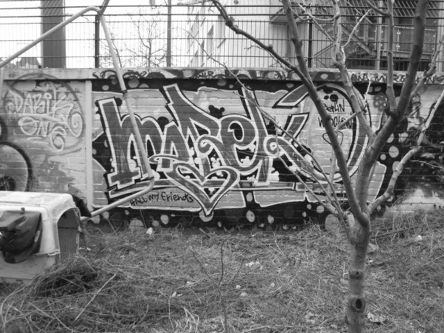 a-dsci0164